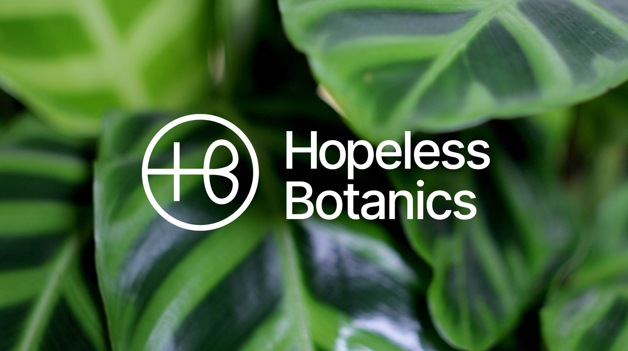 Cover image: Hopeless Botanics