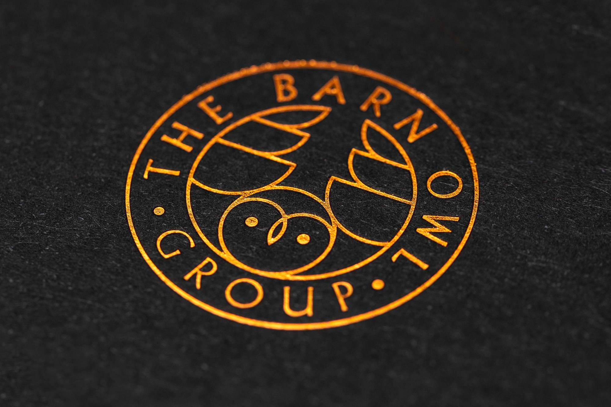 Cover image: The Barn Owl Group Identity