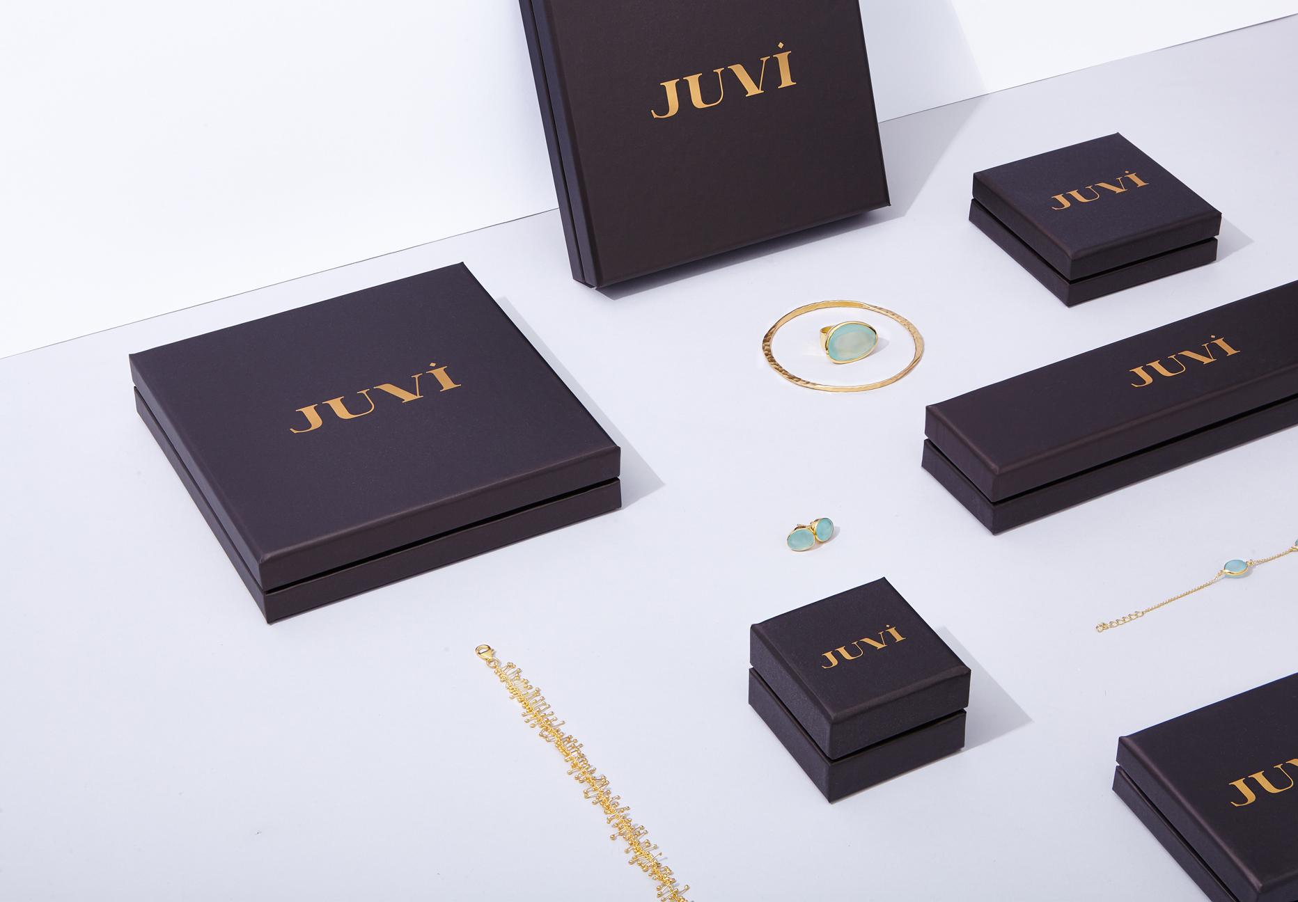 Cover image: JUVI Identity (2015)