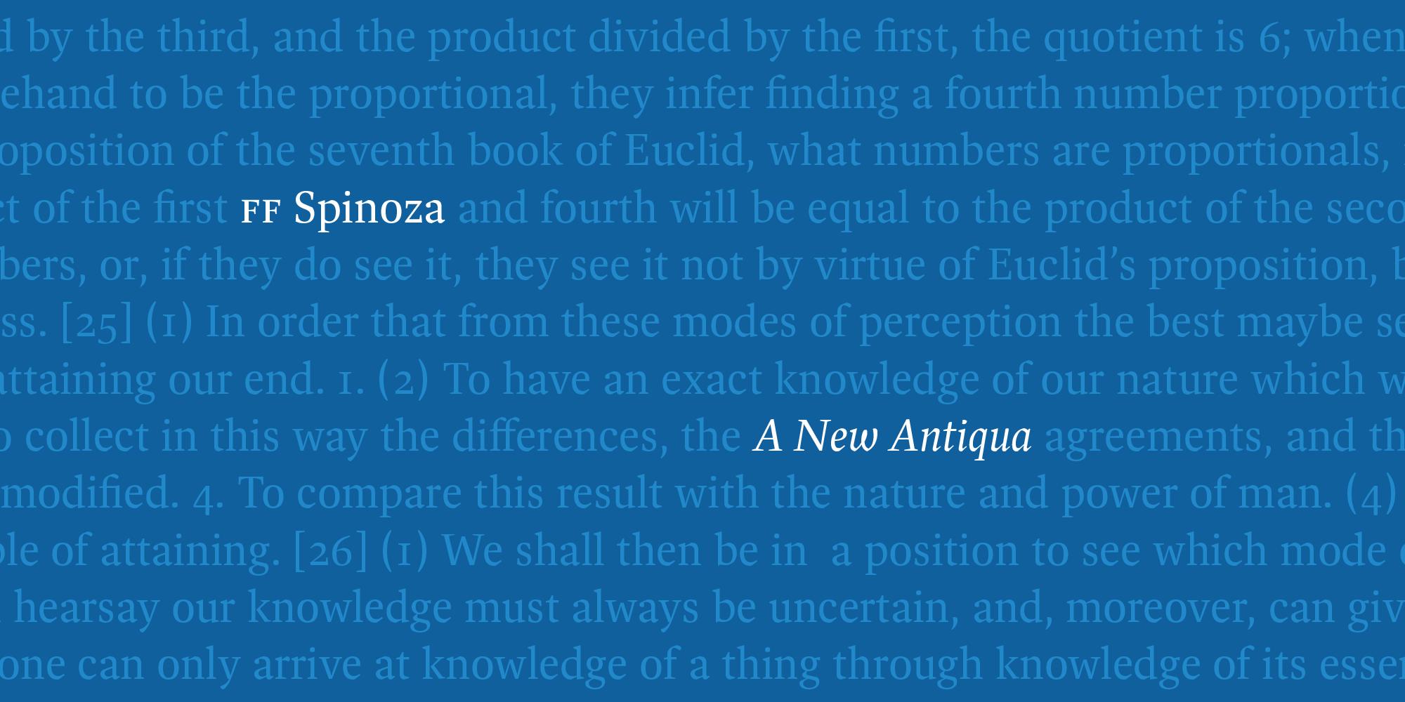 Cover image: FF Spinoza (2011)