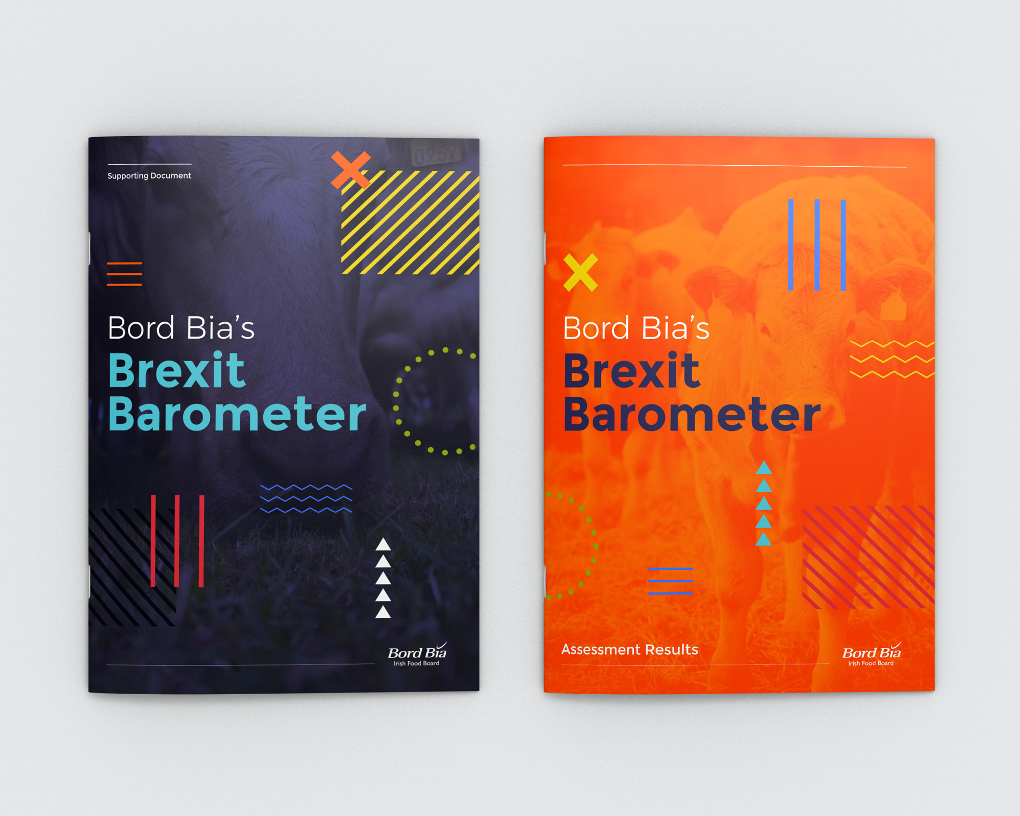 Cover image: Bord Bia's Brexit Barometer