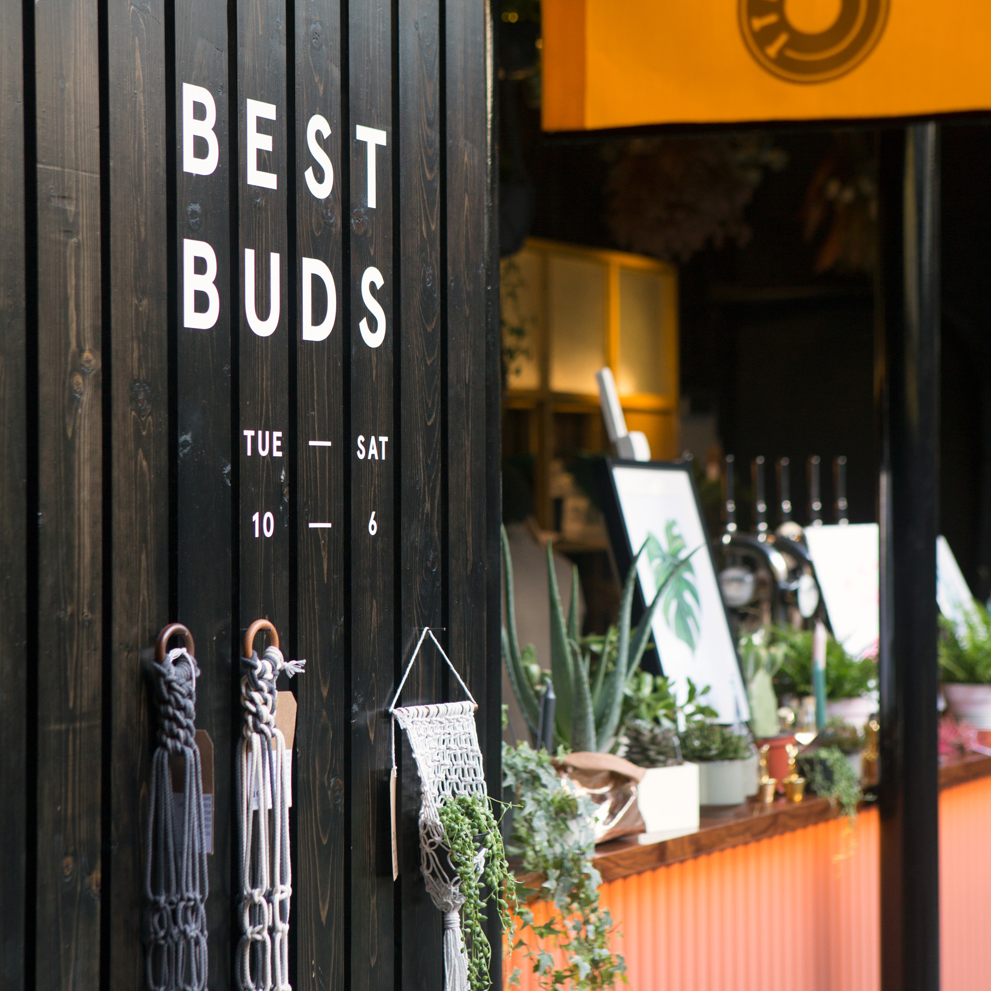 Cover image: Best Buds Belfast