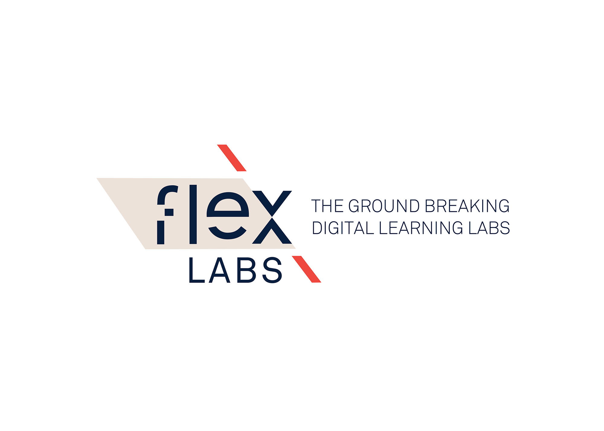 Cover image: FLEX LABS BRAND STRATEGY / NAME GENERATION / BRAND IDENTITY SYSTEM