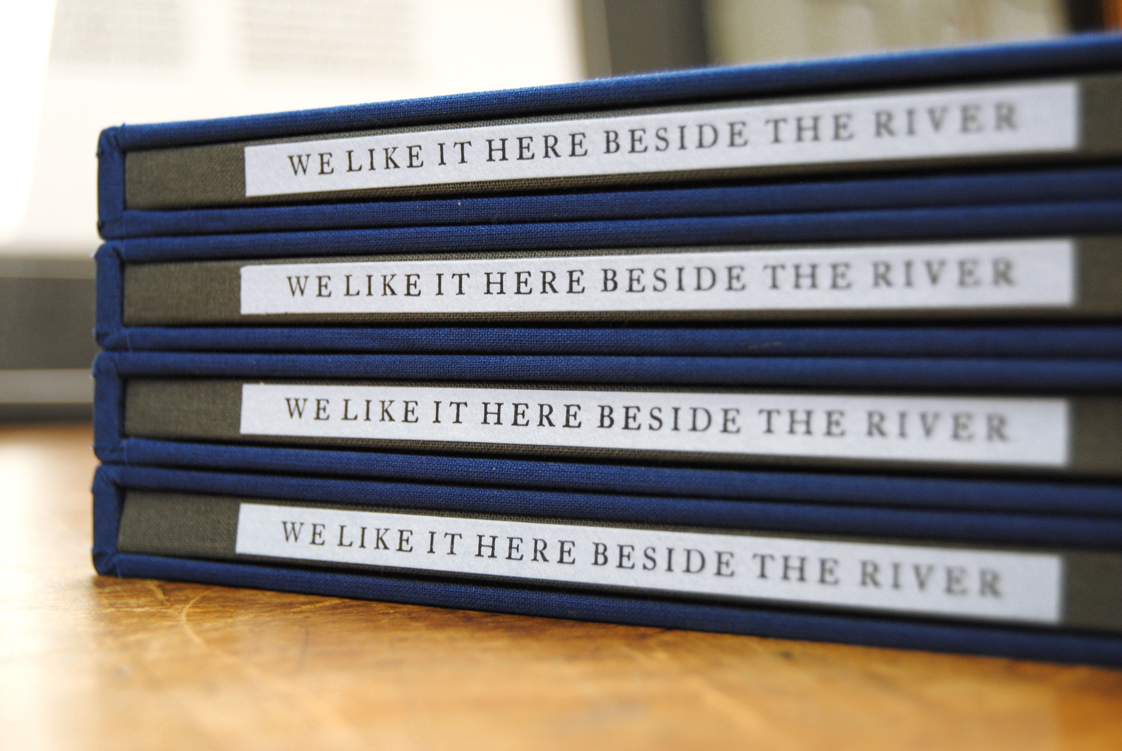 Cover image: We Like It Here Beside The River (2014)