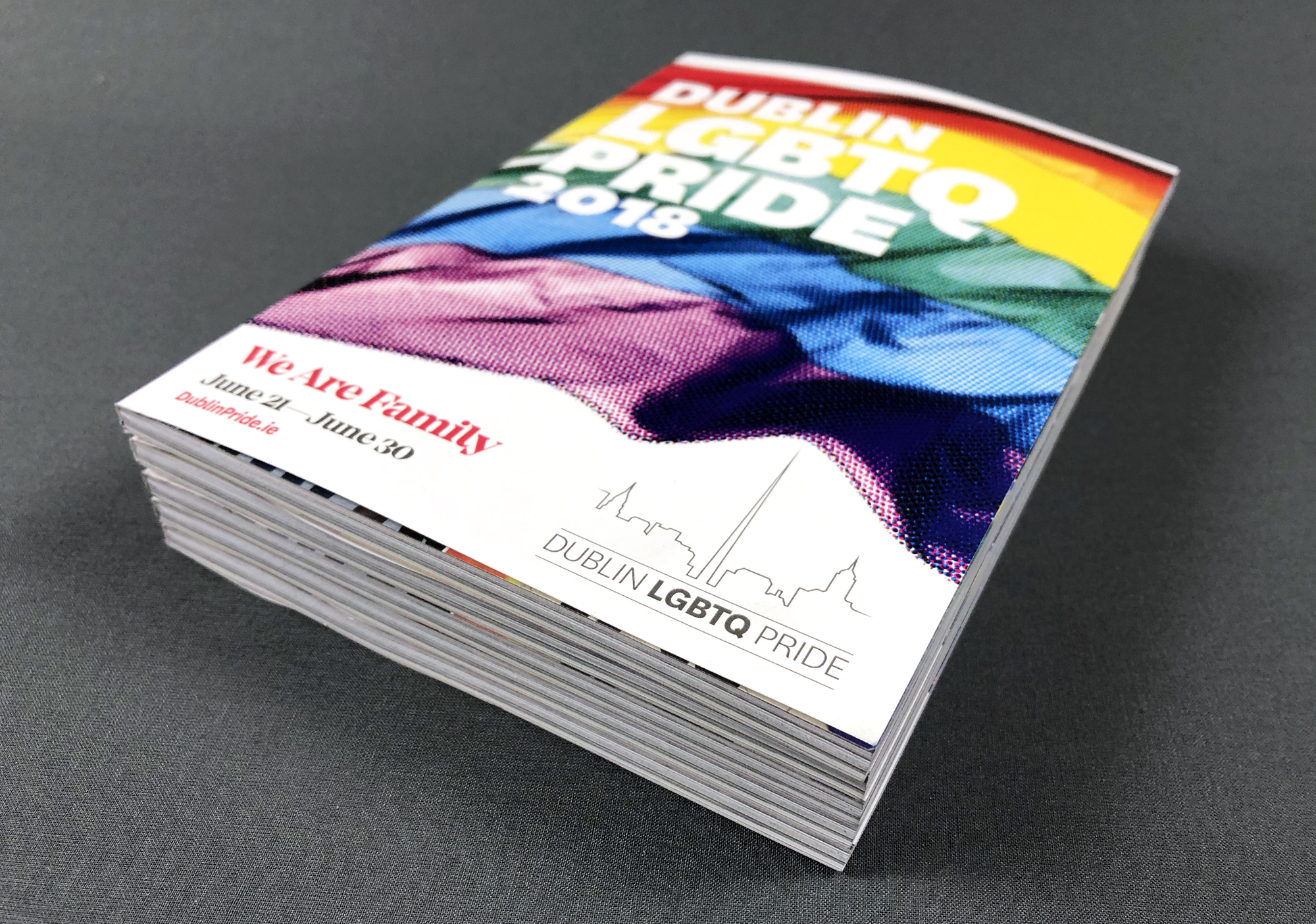 Cover image: Dublin Pride Guide: We Are Family