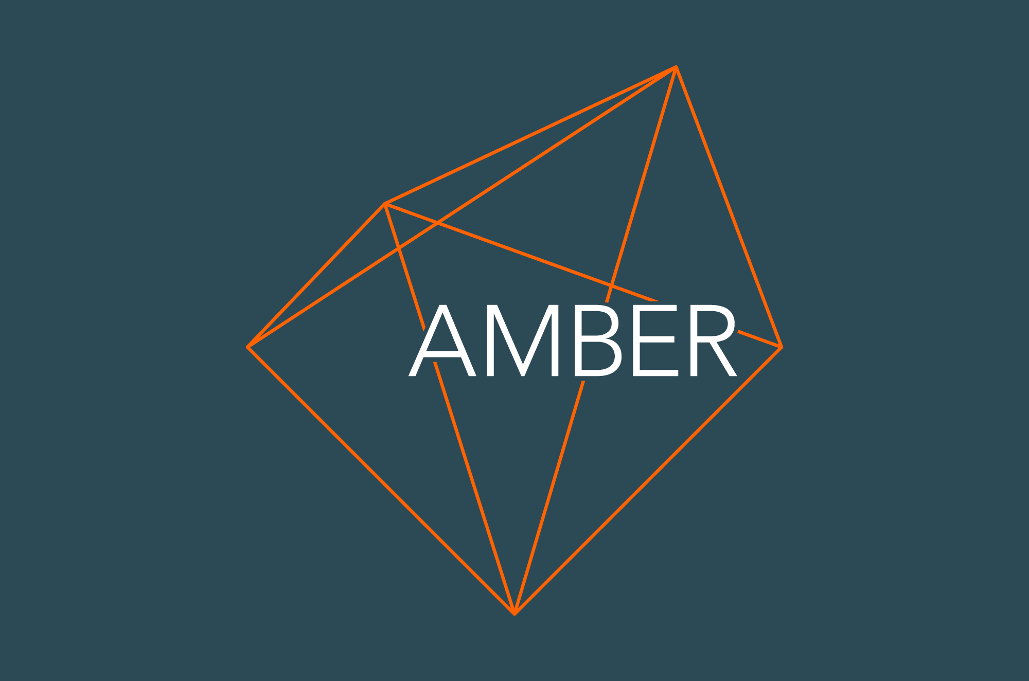 Cover image: Amber Identity (2013)
