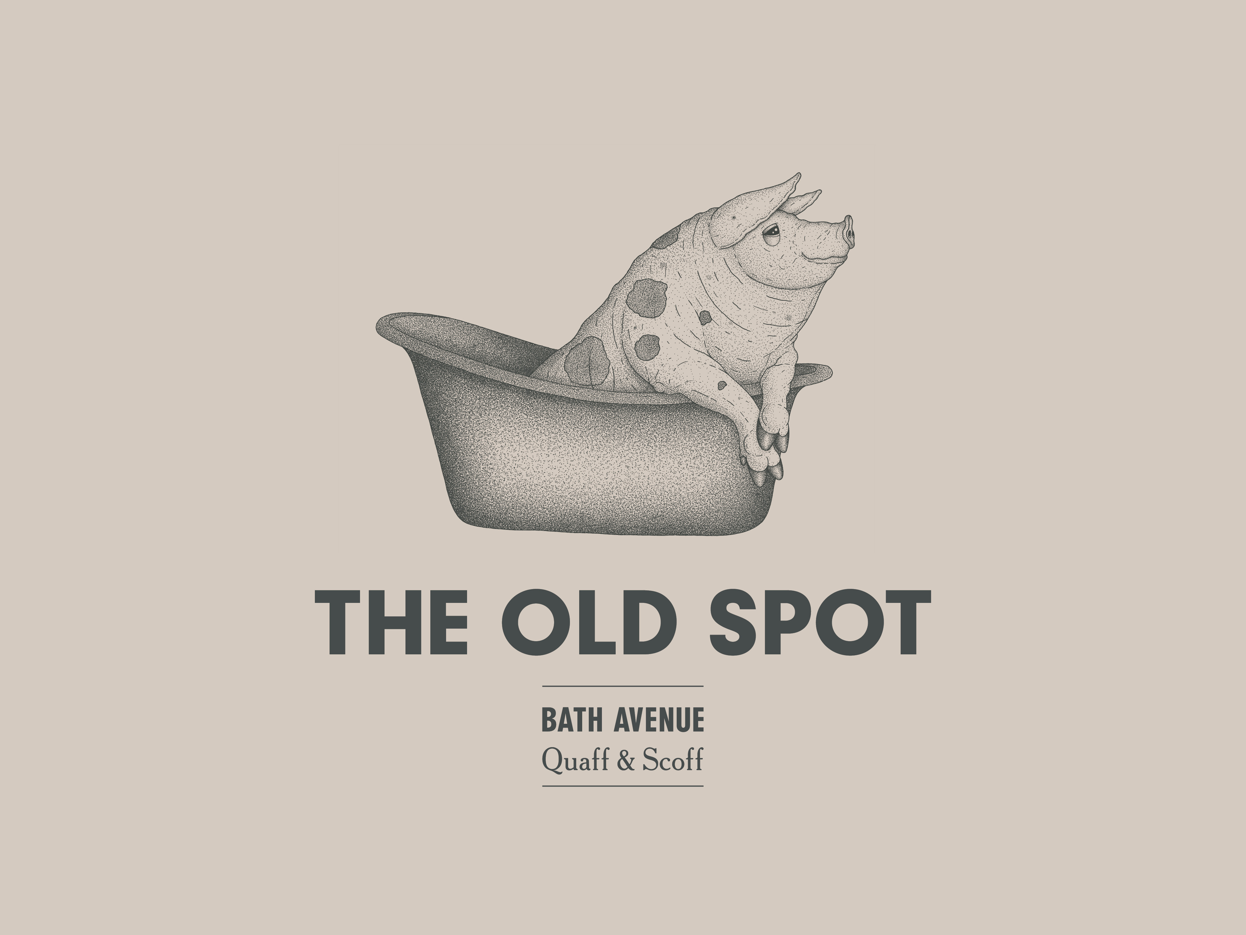 Cover image: The Old Spot (2014)
