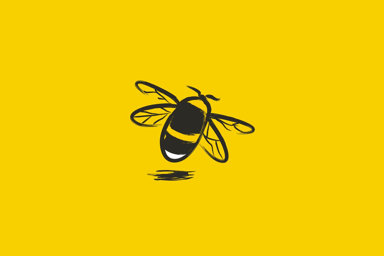 Cover image: Kilkenny County Council Pollinator Plan
