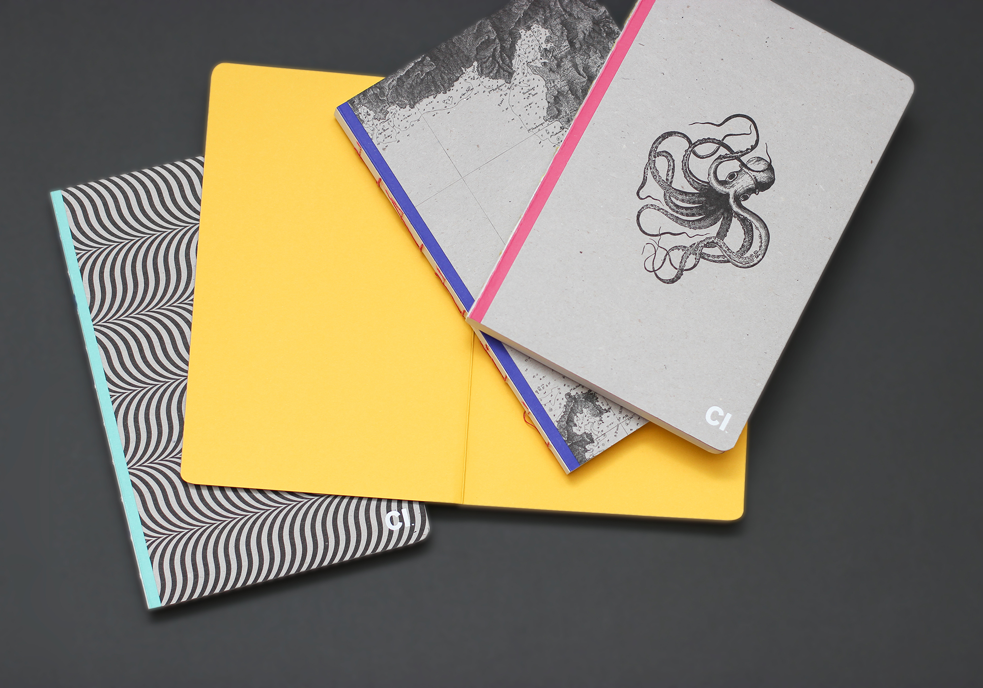 Cover image: CI Notebook