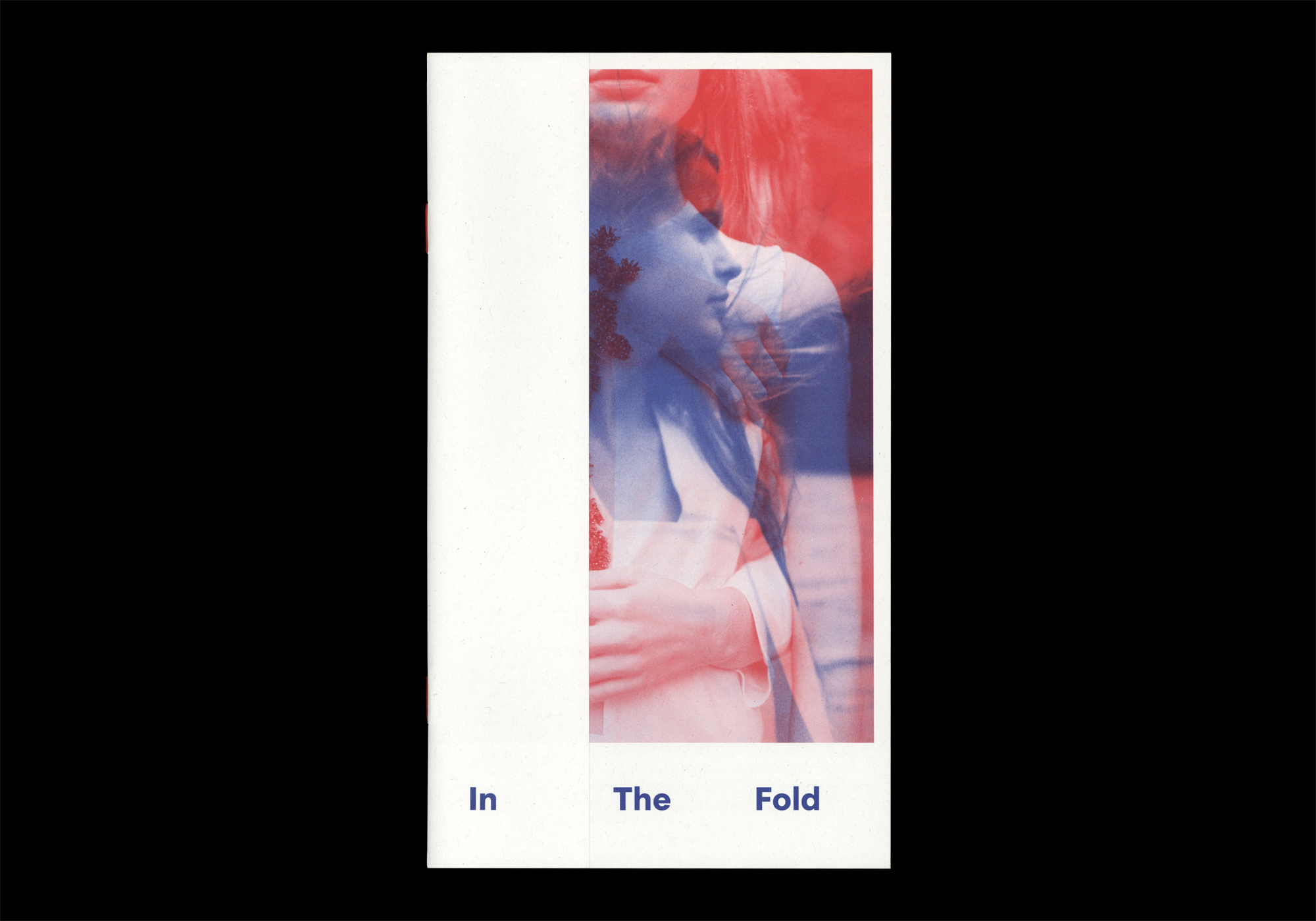 Cover image: In The Fold (2015)