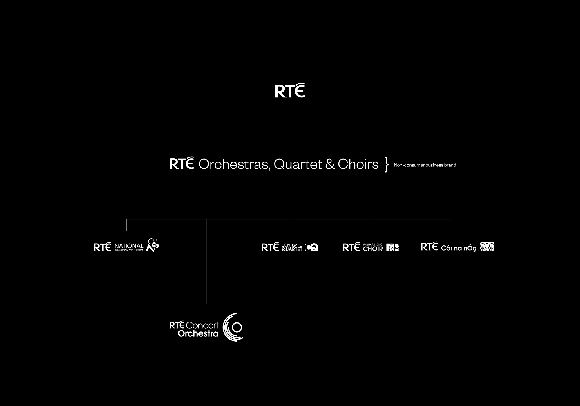 Cover image: RTÉ Concert Orchestra Identity framework