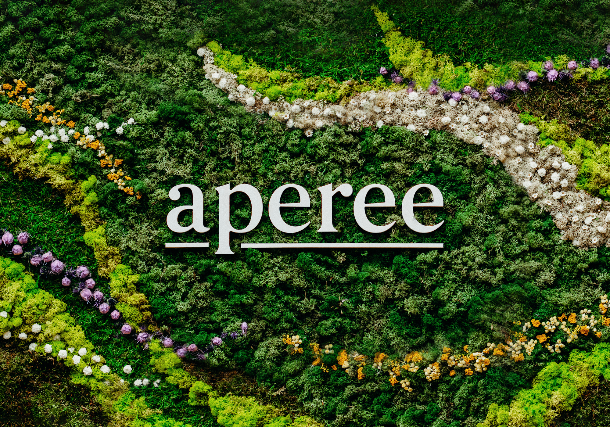 Cover image: aperee
