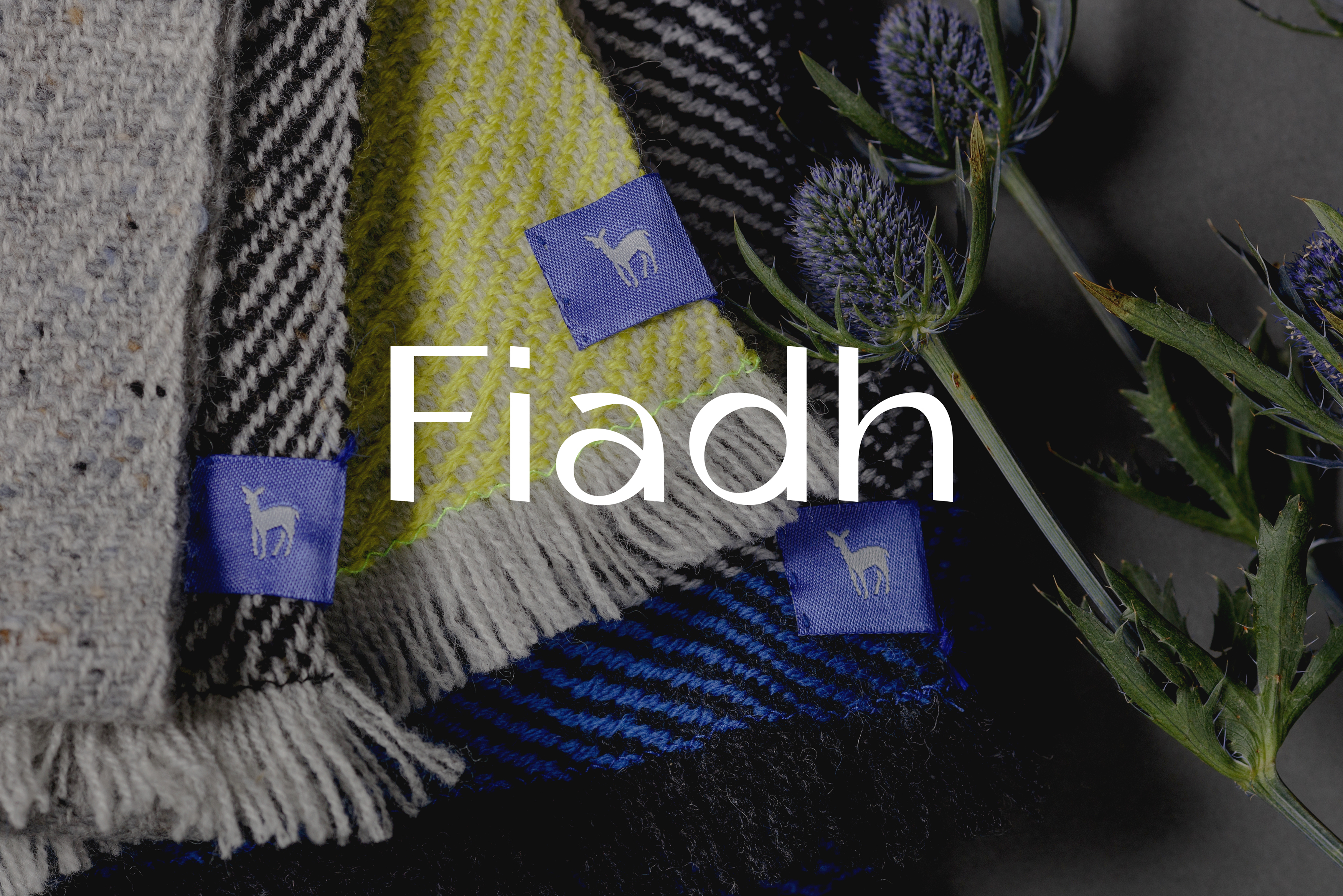 Cover image: Fiadh