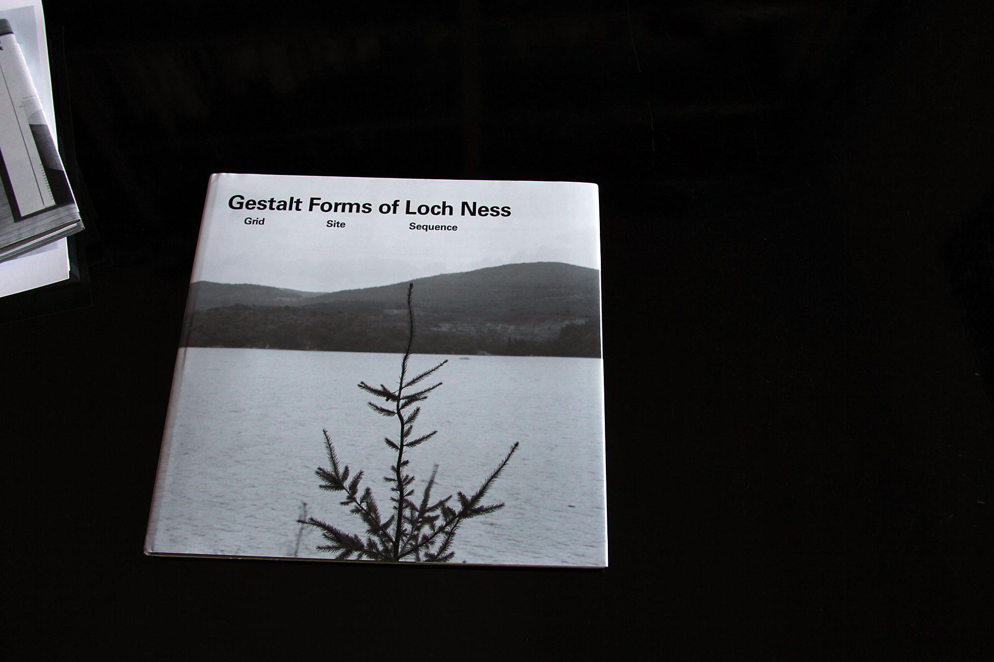 Cover image: Gestalt forms of Loch Ness: grid site sequence (2012)