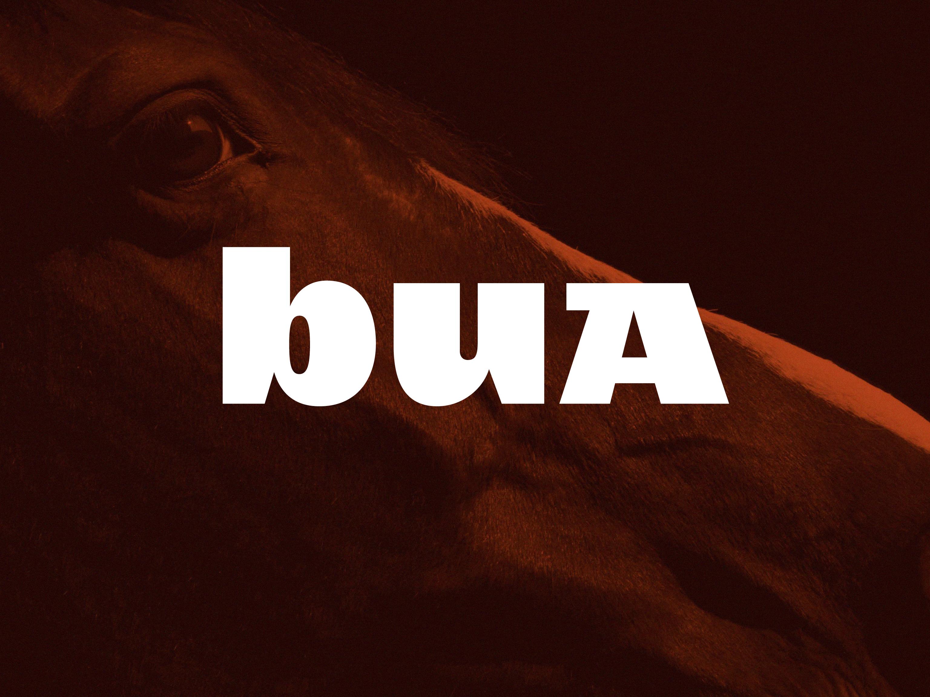 Cover image: Bua Saddles – Identity