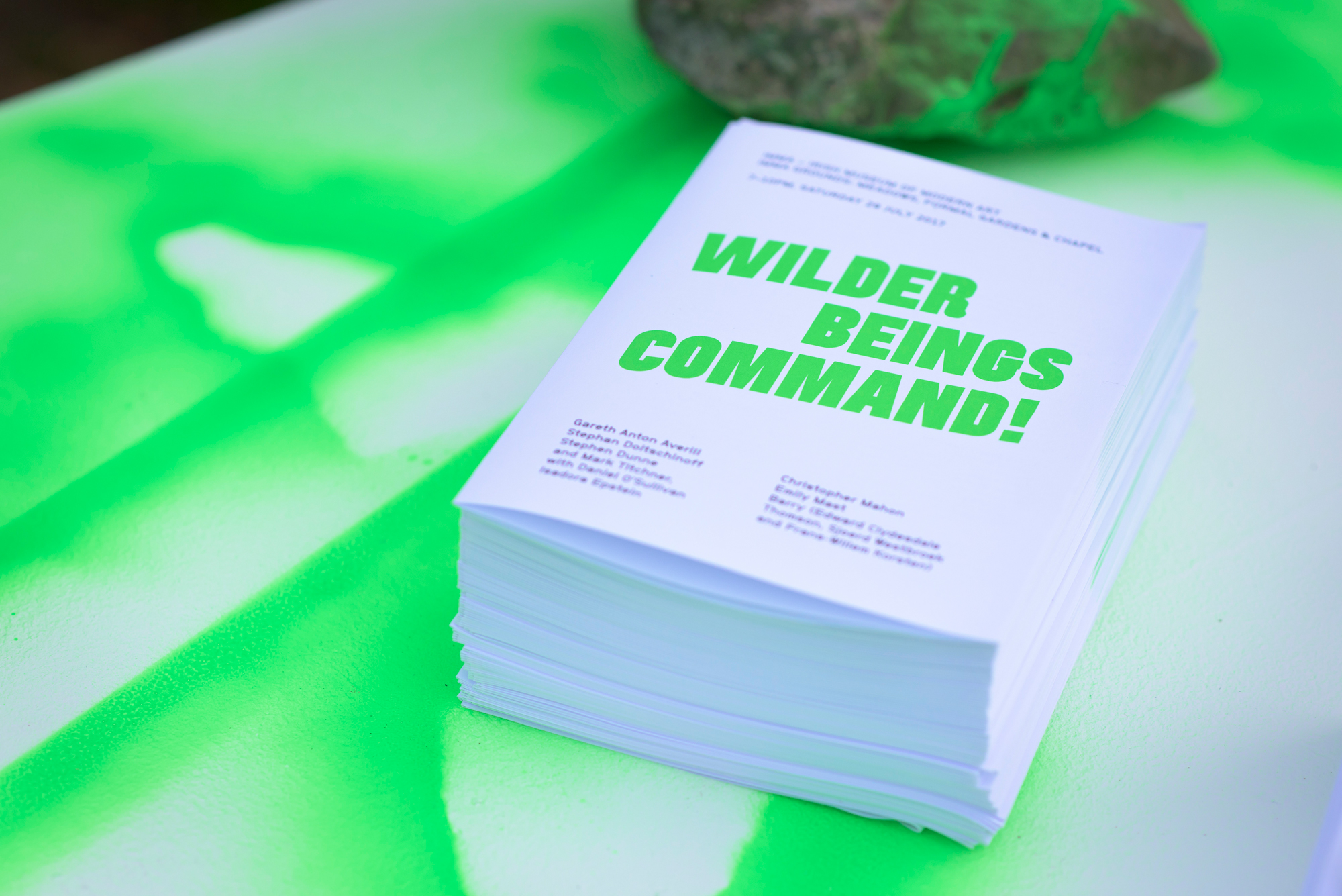 Cover image: Wilder Beings Command!