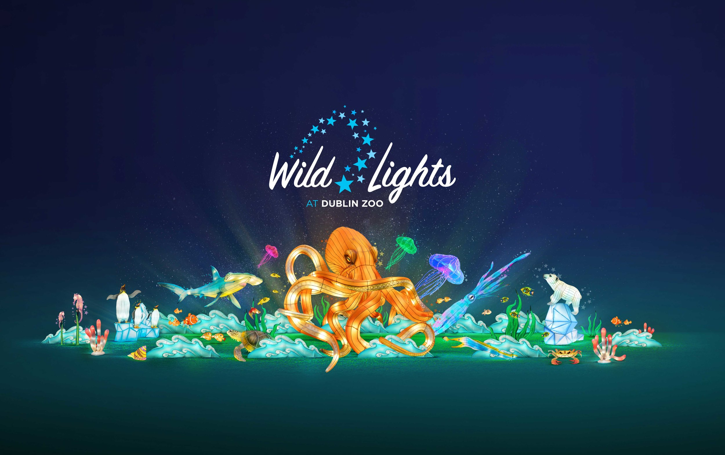 Cover image: Wild Lights
