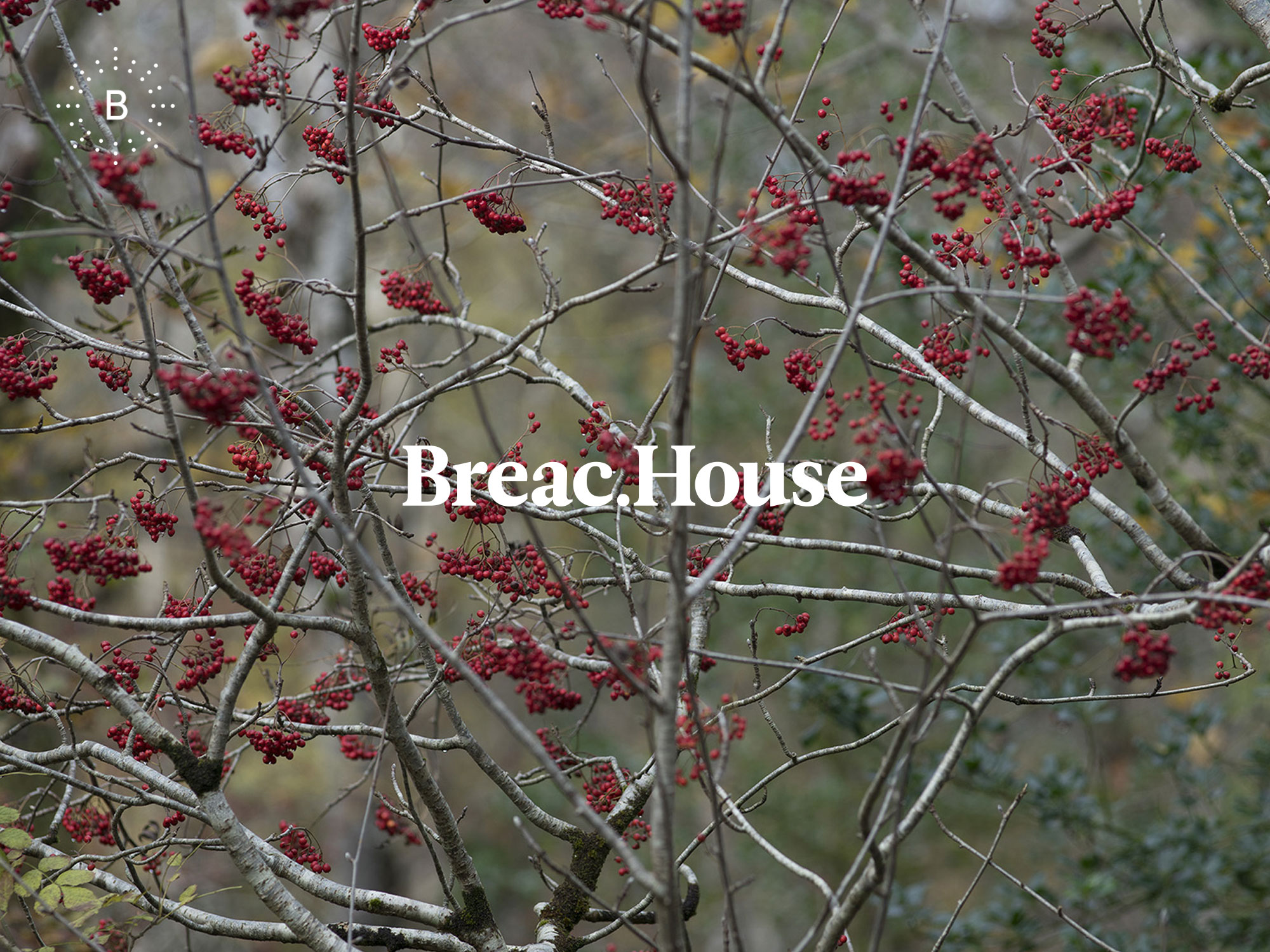 Cover image: Breac.House