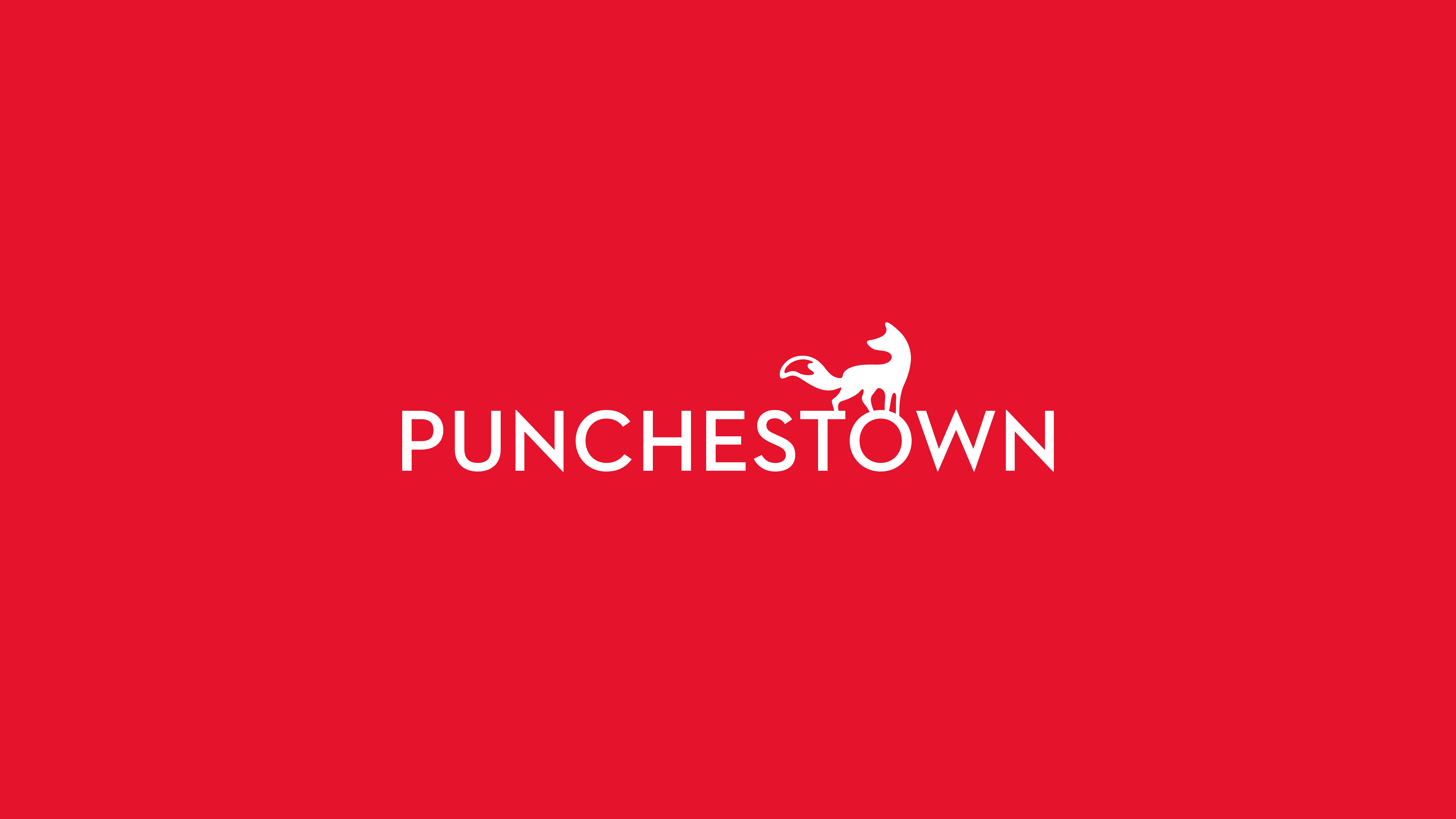 Cover image: Punchestown Branding