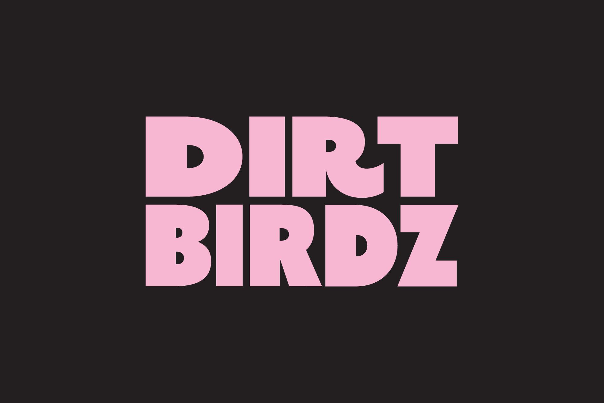 Cover image: Dirt Birdz - Identity