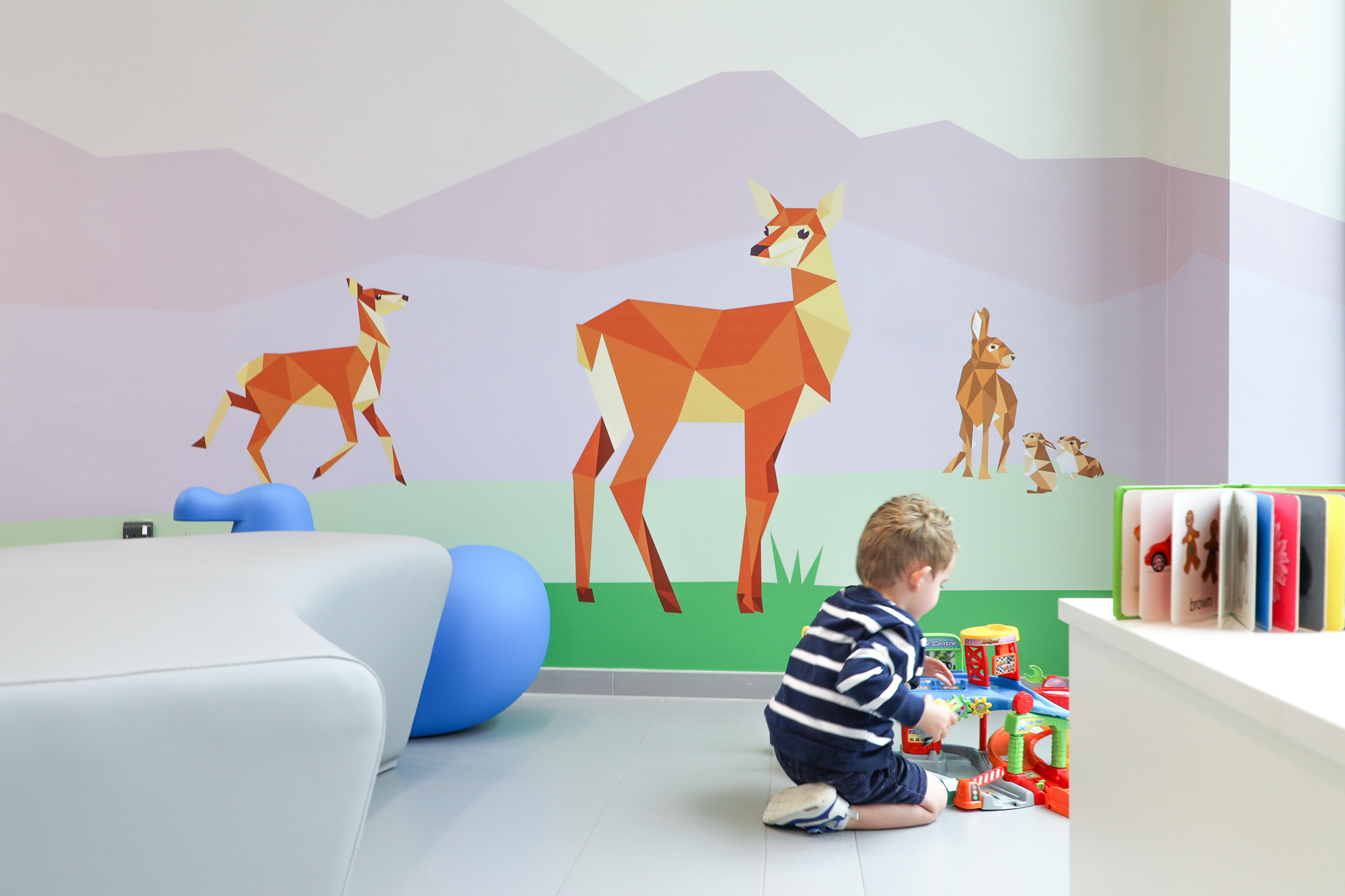 Cover image: Children's Health Ireland at Connolly Hospital — Wall Graphics