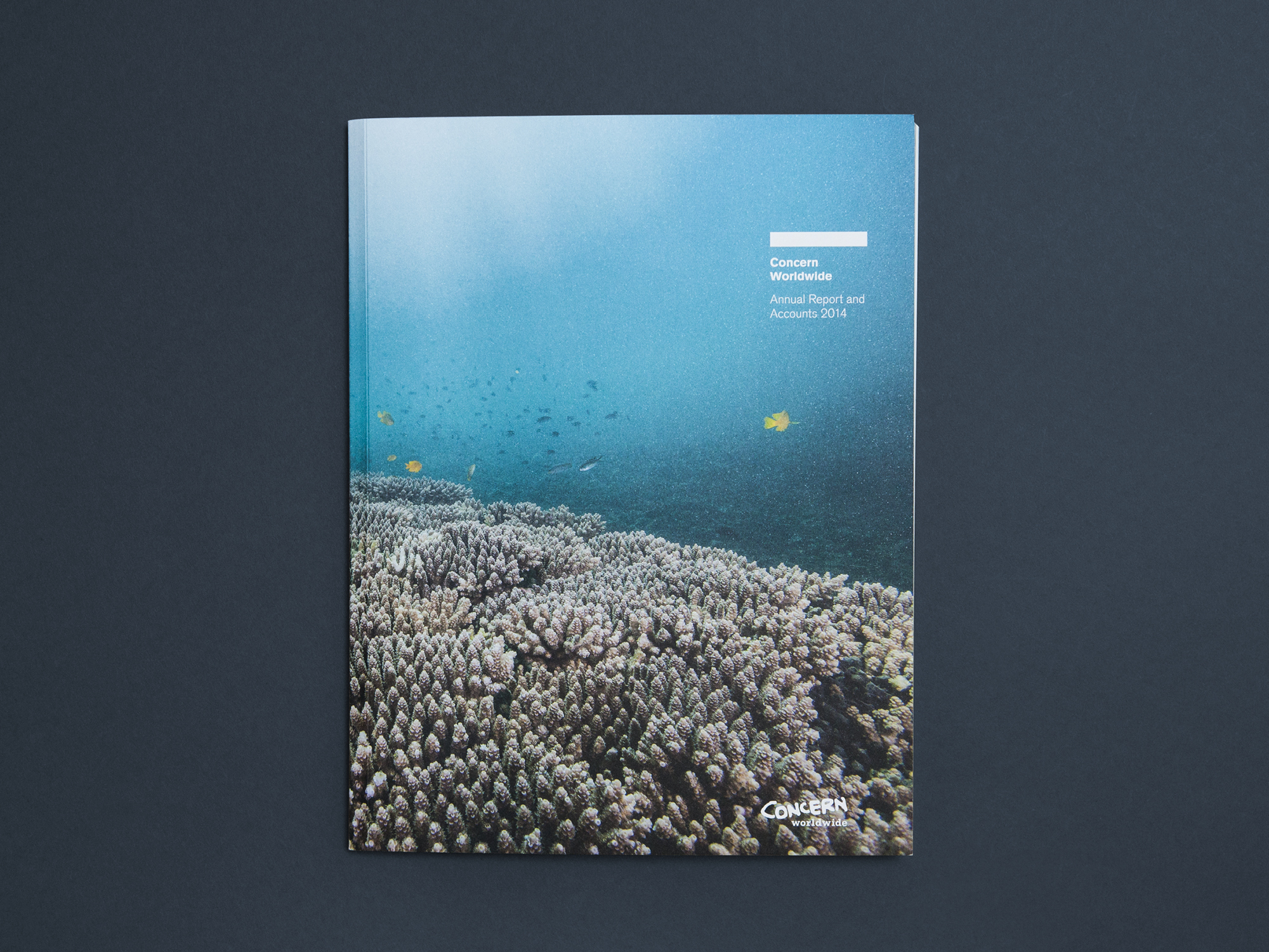 Cover image: Concern Worldwide Annual Report 2014 (2015)