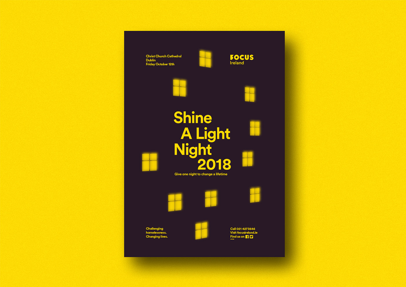 Cover image: Shine a Light Night