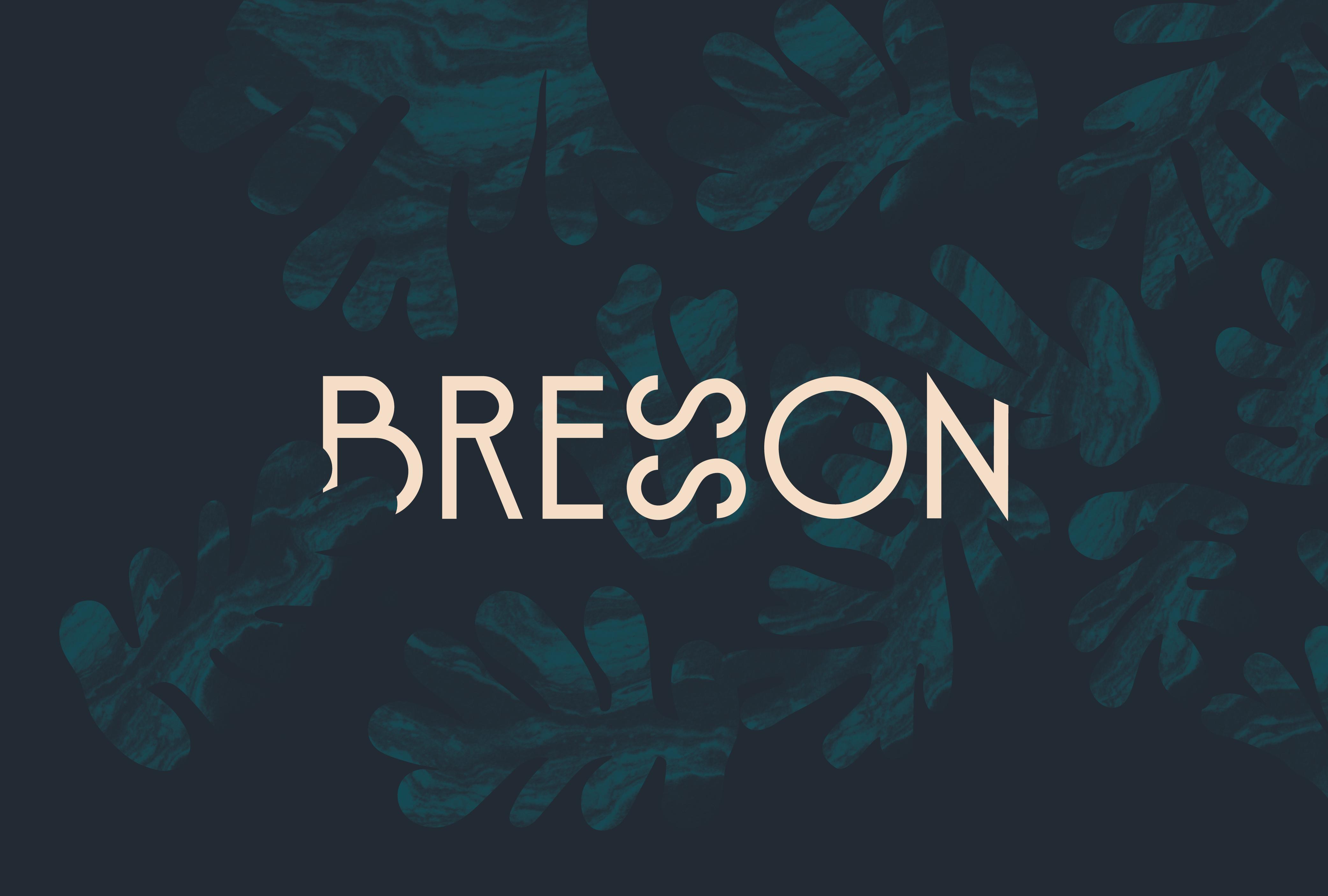 Cover image: Bresson